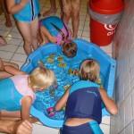 Zwembad Staphorst - 12