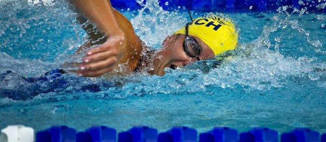 swimming-swimmer-female-race-73760